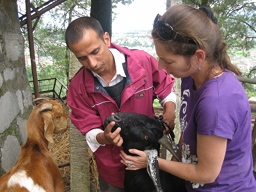 Animal Sanctuary in Nepal