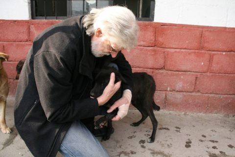 Dr Howard gives injured street dog a hug during assessment