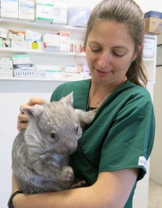 Spiritual Care for Animals