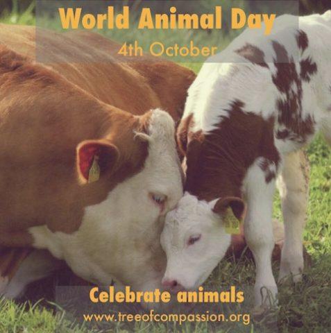 World_Animal_Day-TofC copy